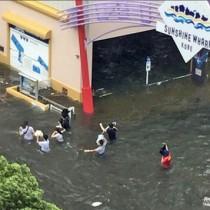 腰まで水に漬かりながら避難する住民=4日午後、神戸市(提供写真)