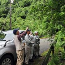 希少種保護パトロールの強化で奄美大島自然保護協議会が配置した監視員=2016年5月、奄美市住用町