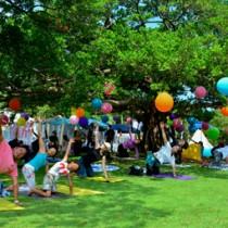 ガジュマルの木の下で爽やかな汗を流した参加者=23日、奄美市名瀬