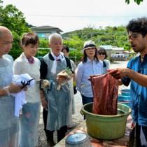 泥染め体験を楽しむ参加者ら=11日、龍郷町の㈲金井工芸