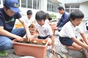 若手農家とともに、ユリなどの球根の植え付けを行う児童=17日、知名町の田皆小