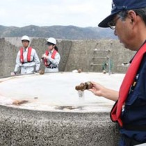 回収されたボルトを確認する海保職員=18日、奄美市名瀬港西防波堤先端付近