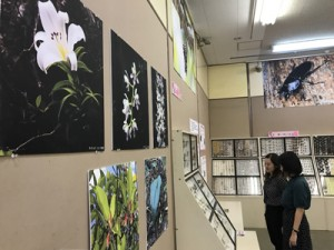 奄美大島と徳之島の自然をテーマにした資料が並ぶ企画展=2日、鹿児島市の県立博物館