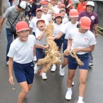 大綱を担いで集落を練り歩く児童ら=17日、奄美市名瀬西田