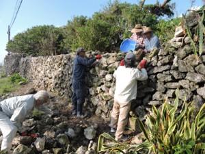 サンゴの石垣の修復作業に当たる住民=18日、喜界町阿伝