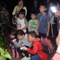 アマミノクロウサギが通るけもの道を観察するナイトツアーの参加者ら=17日、天城町当部