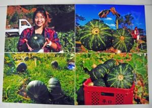 KAMあまみ21大賞に輝いた院田吉雄さんの作品「収穫の日」(上)と、審査風景=1日、奄美市名瀬