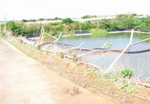 台風24号接近の際に倒れたというため池の フェンス=5日、和泊町国頭