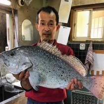4キロのツチセボリを釣り上げた籾昭海さん=11月8日、加計呂麻島