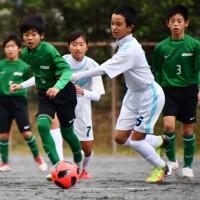 36チームが出場して開幕した南海日日旗争奪少年サッカー大会=15日、名瀬運動公園多目的広場