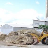 2018―19年期操業を開始した与論島製糖与論事業所=15日、与論町