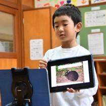 奈良県の名柄小児童にアマミノクロウサギについて紹介する内田君=7日、宇検村の名柄小中学校