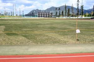 天然芝の敷設工事が完了した天城町総合運動公園グラウンド=25日、天城町浅間