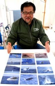 ザトウクジラのポストカードを制作した加川さん=1月30日、徳之島町亀津