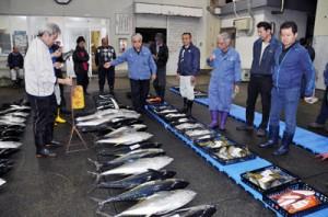 新鮮な魚が並んだ名瀬漁協の初競り=5日、奄美市名瀬