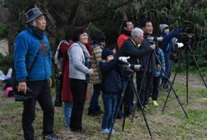 元旦恒例の探鳥会を楽しむ参加者ら=1日、奄美市笠利町の大瀬海岸