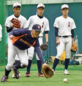 捕球の基本を教えるENEOSの田中将也内野手(手前)=9日、名瀬運動公園屋内練習場