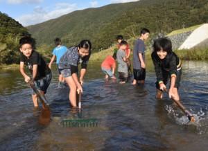 川底を耕してリュウキュウアユの産卵環境を整える児童ら=2018年10月28日、奄美市住用町
