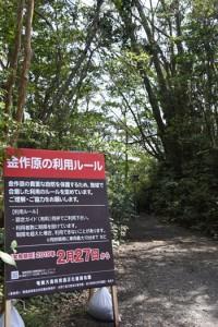 27日に利用規制の試行が始まる金作原国有林=26日、奄美市名瀬