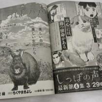 奄美群島が舞台となった「しっぽの声」が掲載されている2月20日発売のビッグコミックオリジナル