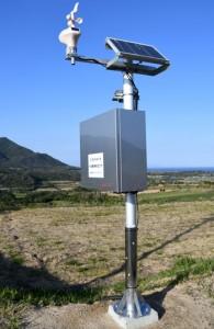 3町サトウキビほ場に設置したフィールドサーバー=14日、徳之島町花徳