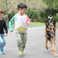 マングース探索犬との触れ合いを楽しむ子どもたち=24日、大和村