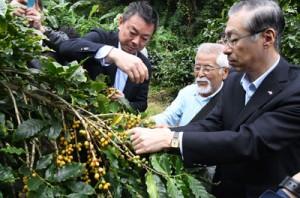 コーヒー果実の収穫作業を行う生産支援プロジェクトの代表者ら