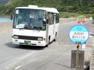 路線廃止で新設されたしまバスの根瀬部―奥又線のバス=6日、奄美市名瀬根瀬部