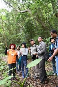 エコツアーガイドから説明を受けるインドネシアの国立公園事務所の職員ら=20日、天城町三京