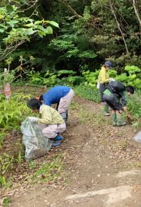除去作業を行う奄美マングースバスターズのメンバーら=22日、奄美市住用町の奄美中央林道(提供写真)
