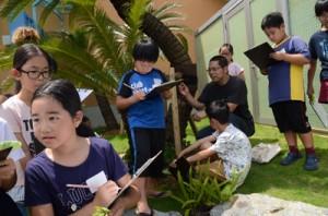 放浪館周辺で野草採りを楽しむ小学生ら=19日、龍郷町戸口