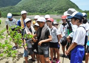 マングローブ林で干潟の生き物について学ぶ児童生徒=7日、奄美市住用町