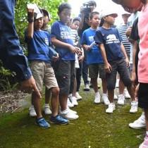 「あまぎ学」のフィールドワークで徳之島の自然に理解を深めた児童ら=13日、天城町当部