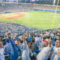 ベイスターズの攻撃に沸く奄美席=5月24日、横浜スタジアム