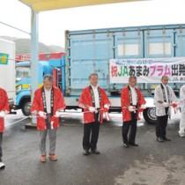 テープカットで出荷開始を祝った出発式=9日、大和村のJAあまみ湯湾釜選果場