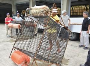 藻場再生のためのケージを整備する漁業関係者=6日、名瀬漁協