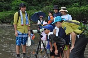 夢中で生き物を探す参加者=21日、奄美市住用町