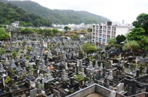 永田川沿いに広がる市有永田墓地。右手奥が奄美支庁舎側=11日、奄美市名瀬