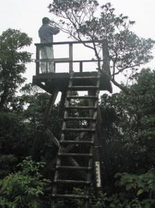撤去された旧展望台=2010年12月(大和村役場提供)