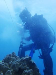 ハワイでのサンゴ掘削作業(提供写真)