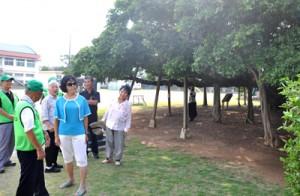 国頭ガイドクラブの案内で、観光を楽しむ旅行者=15日、和泊町の国頭小学校