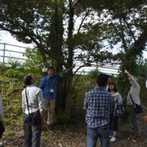 身近な植物を通して自然観察の手法を学んだセミナー=8日、奄美市名瀬の県立奄美少年自然の家