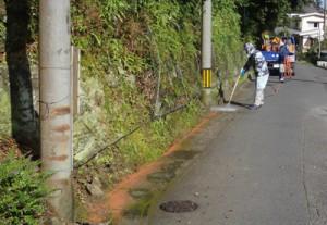 山すそに駆除剤を散布する奄美市の作業員ら=10月31日、同市名瀬(提供写真)