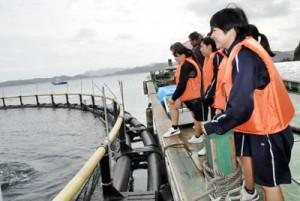 マグロの養殖現場を見学する古仁屋高校の生徒ら=19日、瀬戸内町花天