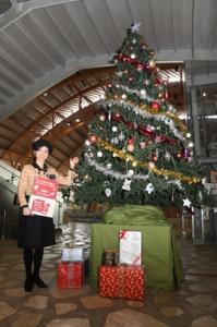 奄美パークでクリスマススリー点灯191128西谷