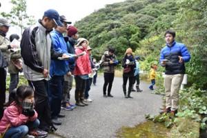 路傍の植物を観察する参加者ら