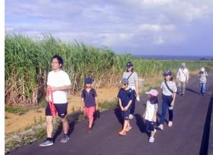 心地よい風が吹くサトウキビ畑のコースを歩く親子連れ=1日、奄美市笠利町