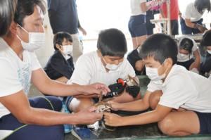 増殖用のサンゴ苗づくりを体験する児童ら=14日、与論町漁協