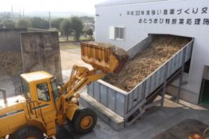 搬入が始まり、精脱葉処理施設に運ばれる原料のサトウキビ=18日、喜界町の生和糖業