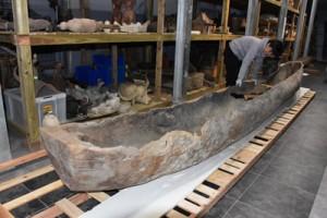 漂着した宇和島市からおよそ100年ぶりに里帰りした丸木舟=13日、奄美市住用町